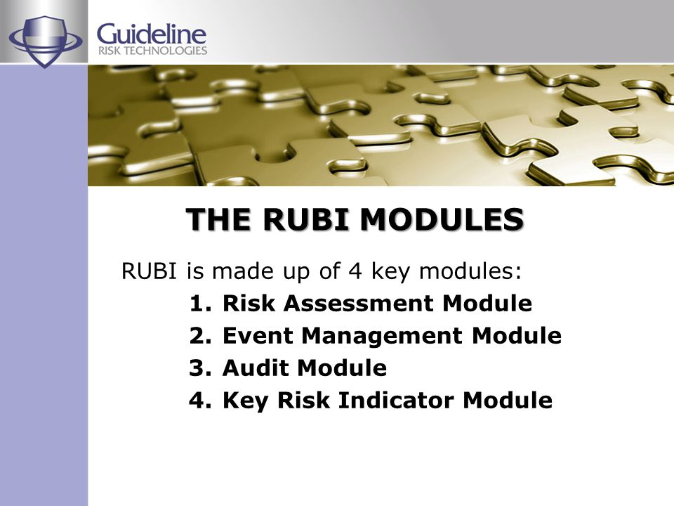 Risks are assessed and linked to processes and objectives Causes are identified Controls are identified and assessed Action plans are created to mitigate the risk Risk levels are continually monitored Control reviews and action plans are driven to completion and risk profile is updated