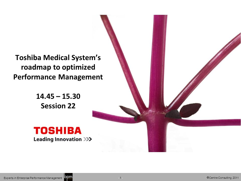 Centre Consulting 2011 - 1 - Experts in Enterprise Performance Management Toshiba Medical Systems roadmap to optimized Performance Management 14.45 –