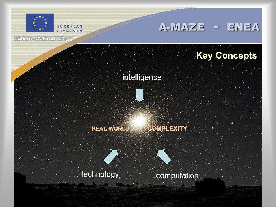 A-MAZE - ENEA REAL-WORLD COMPLEXITY intelligence computation technology Key Concepts