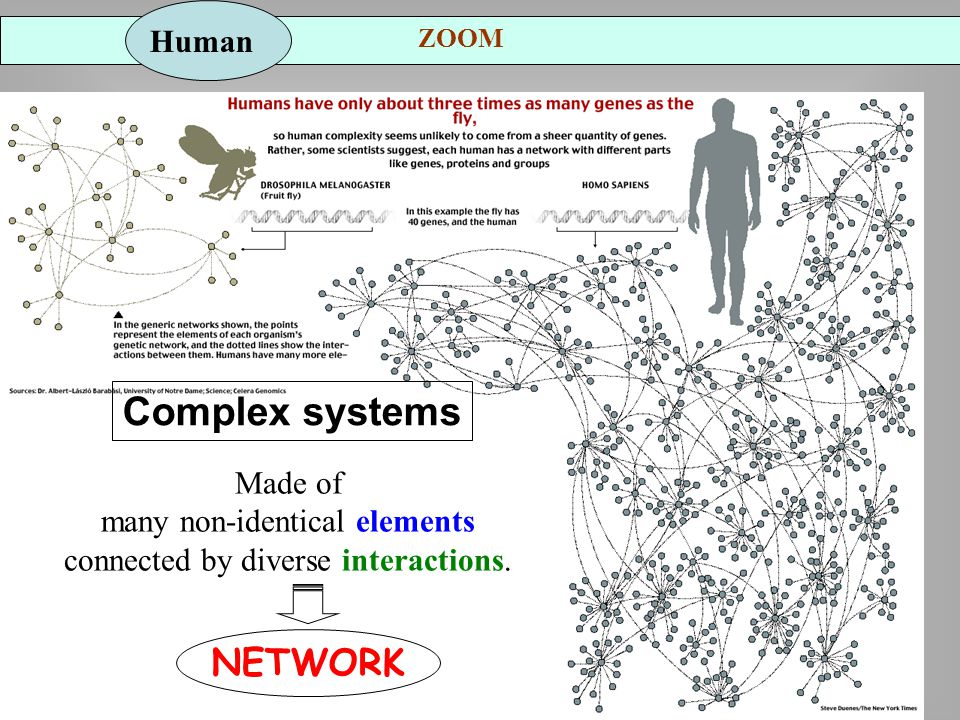 Complex systems Made of many non-identical elements connected by diverse interactions.