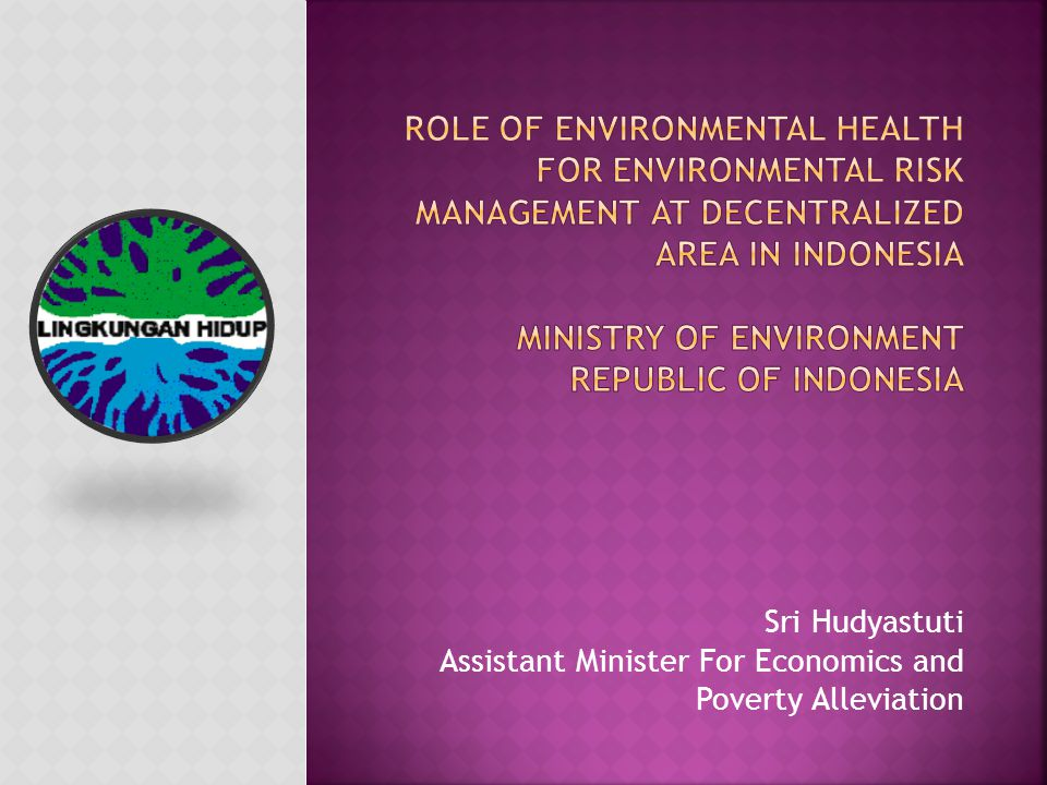 I.Background II. Present Status of the Environment Current Environmental Issues III.