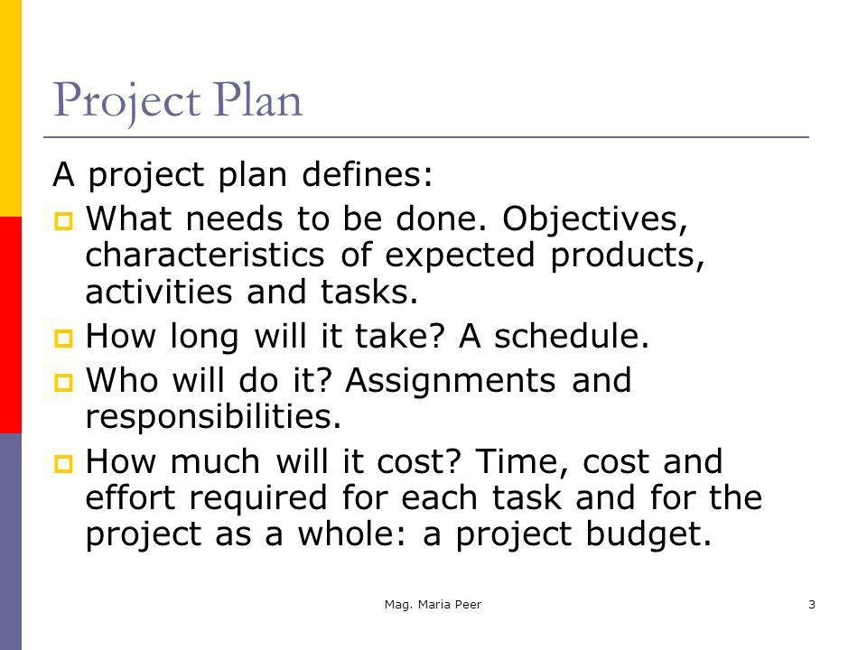 Mag. Maria Peer3 Project Plan A project plan defines: What needs to be done.