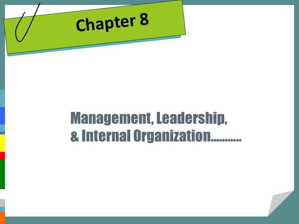 Management, Leadership, & Internal Organization……….. Chapter 8