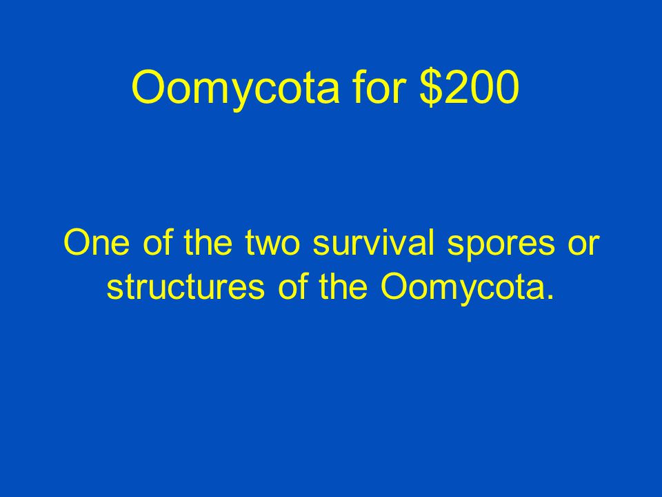 Oomycota for $100 Correct Question: What is an oospore?