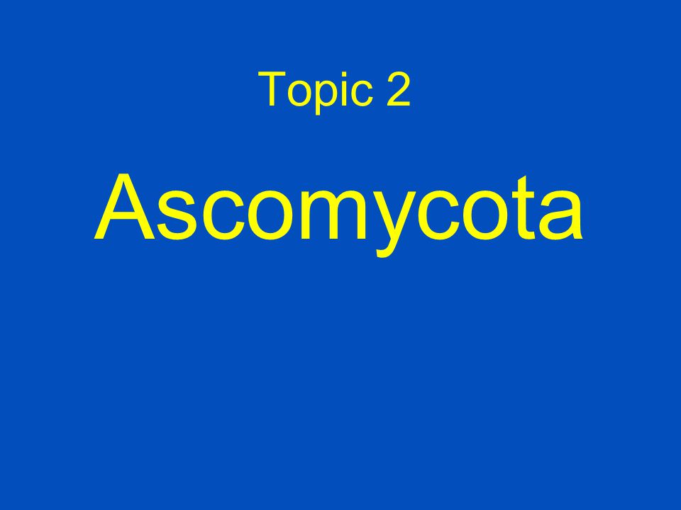 Topic 1 Oomycota