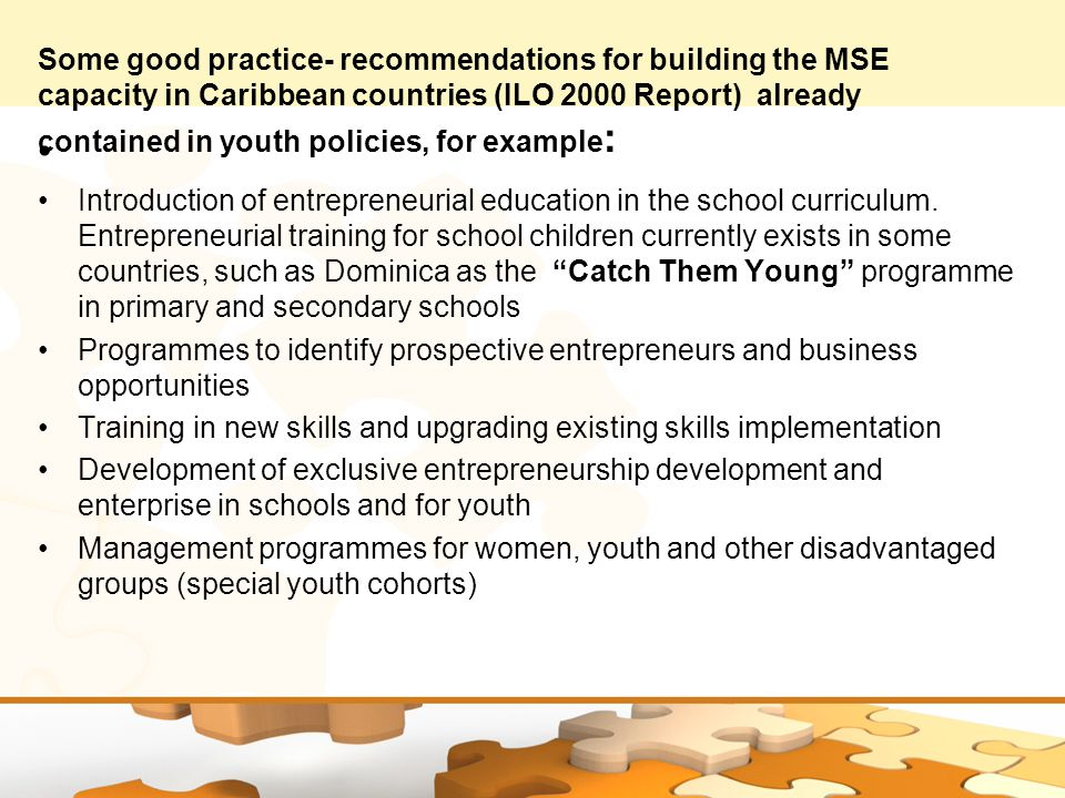 Some good practice- recommendations for building the MSE capacity in Caribbean countries (ILO 2000 Report) already contained in youth policies, for example : Introduction of entrepreneurial education in the school curriculum.