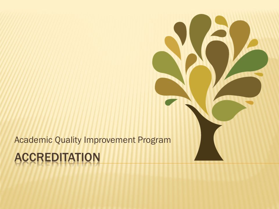 Academic Quality Improvement Program