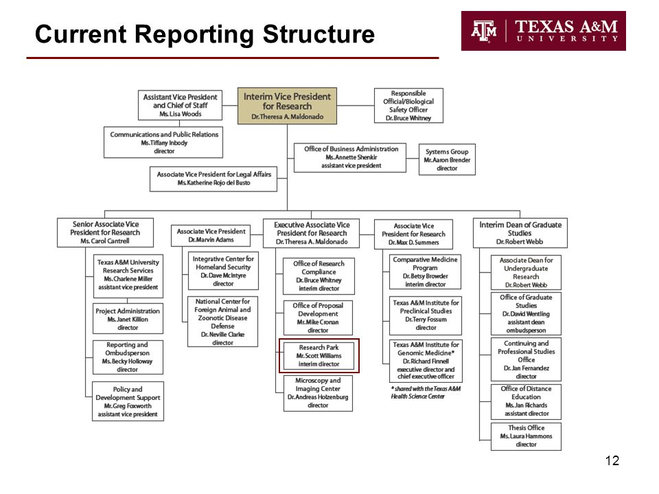 12 Current Reporting Structure