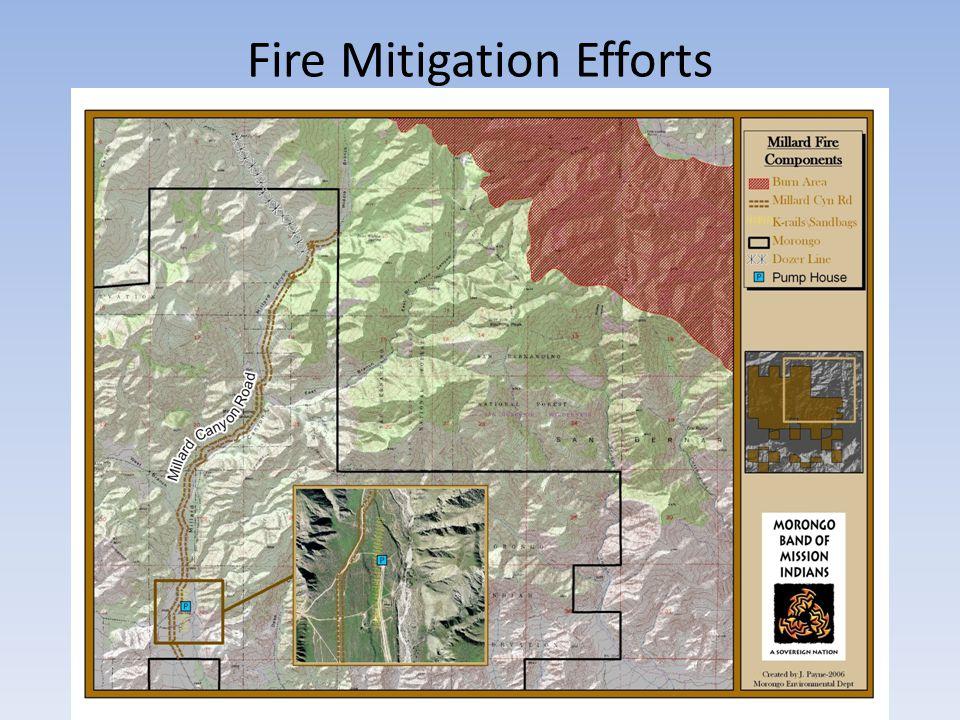 Fire Mitigation Efforts
