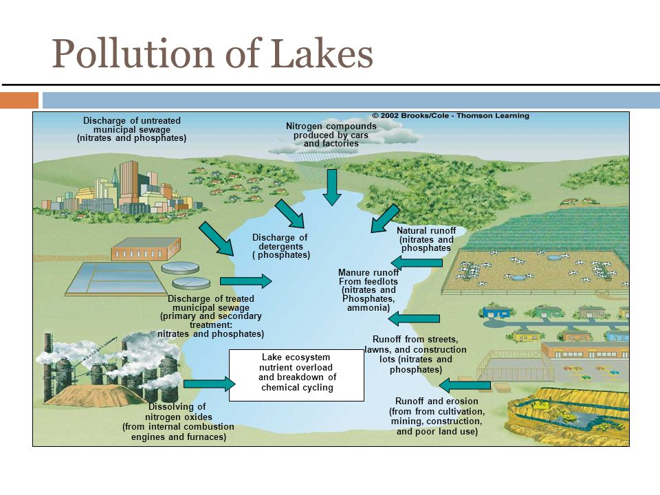 Pollution of Lakes Discharge of untreated municipal sewage (nitrates and phosphates) Nitrogen compounds produced by cars and factories Discharge of treated municipal sewage (primary and secondary treatment: nitrates and phosphates) Discharge of detergents ( phosphates) Natural runoff (nitrates and phosphates Manure runoff From feedlots (nitrates and Phosphates, ammonia) Dissolving of nitrogen oxides (from internal combustion engines and furnaces) Runoff and erosion (from from cultivation, mining, construction, and poor land use) Runoff from streets, lawns, and construction lots (nitrates and phosphates) Lake ecosystem nutrient overload and breakdown of chemical cycling Fig.22.7, p.