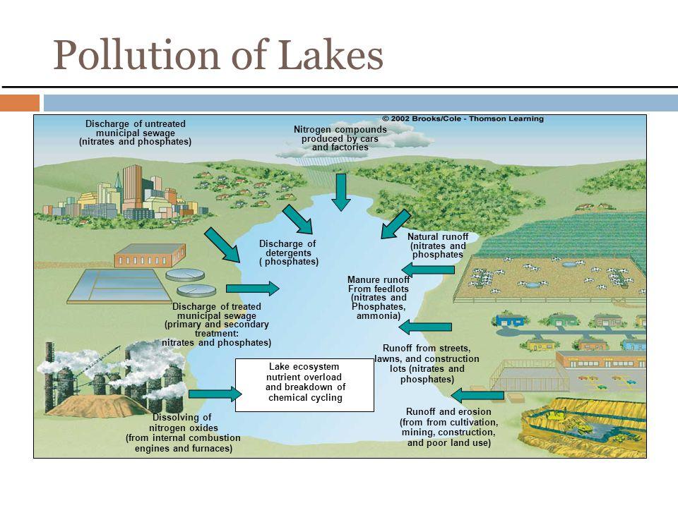 Harmful Algae Blooms Contaminate water w/ harmful toxins