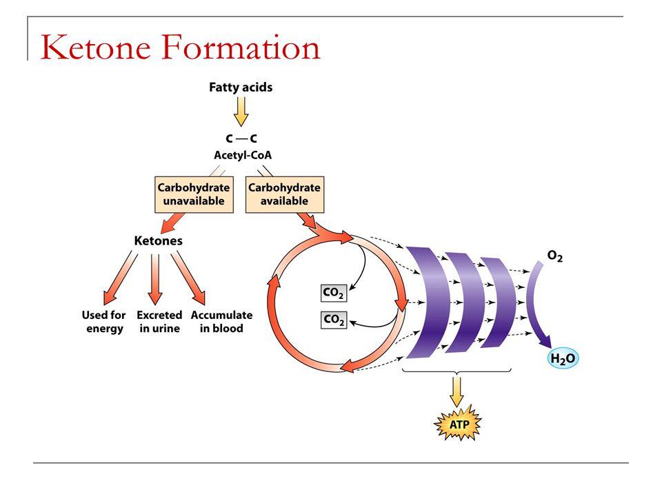 Ketone Formation