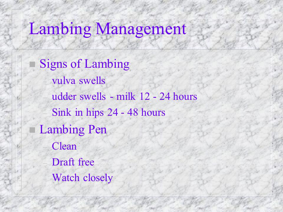 Lambing Management n Signs of Lambing – vulva swells – udder swells - milk 12 - 24 hours – Sink in hips 24 - 48 hours n Lambing Pen – Clean – Draft free – Watch closely