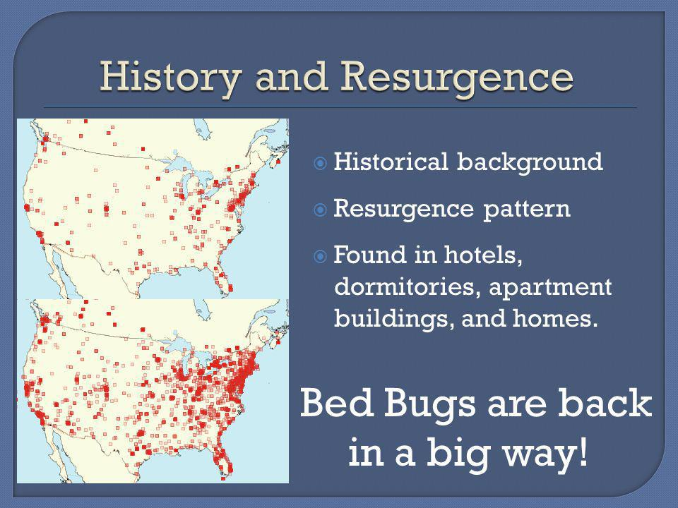 Historical background Resurgence pattern Found in hotels, dormitories, apartment buildings, and homes.