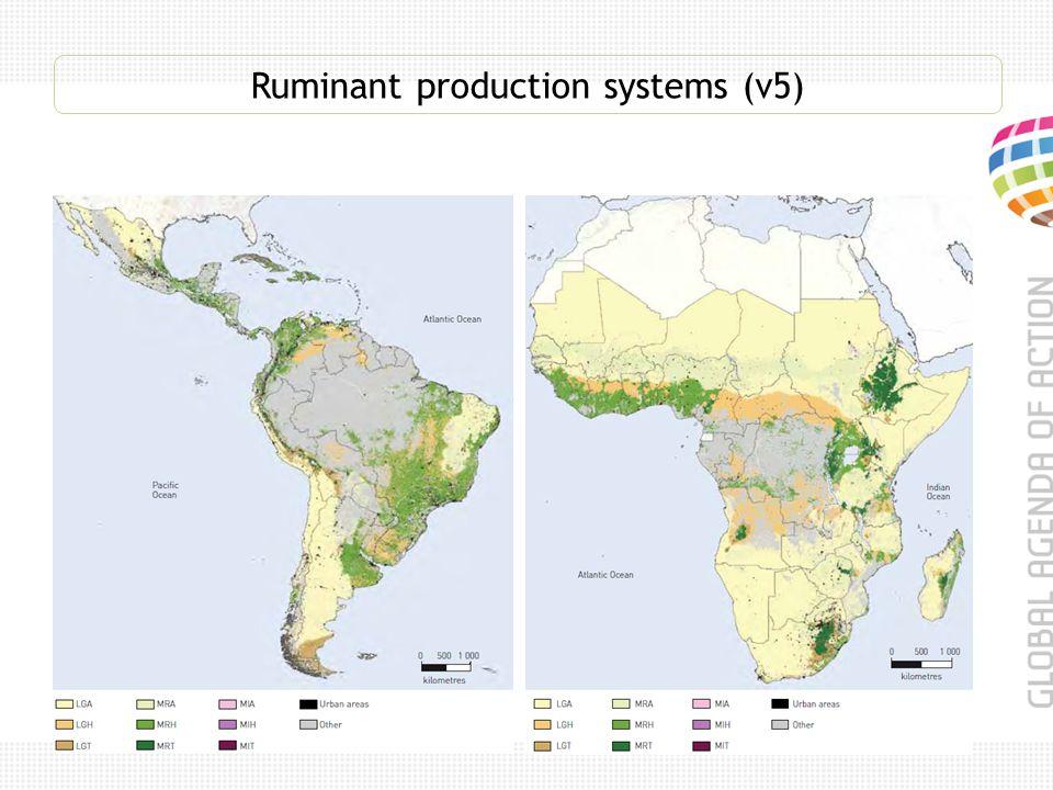 Ruminant production systems (v5)