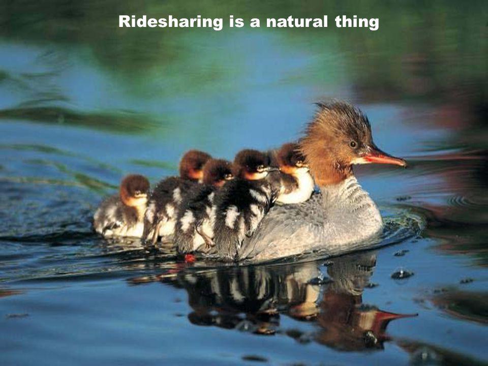 7 Ridesharing is a natural thing