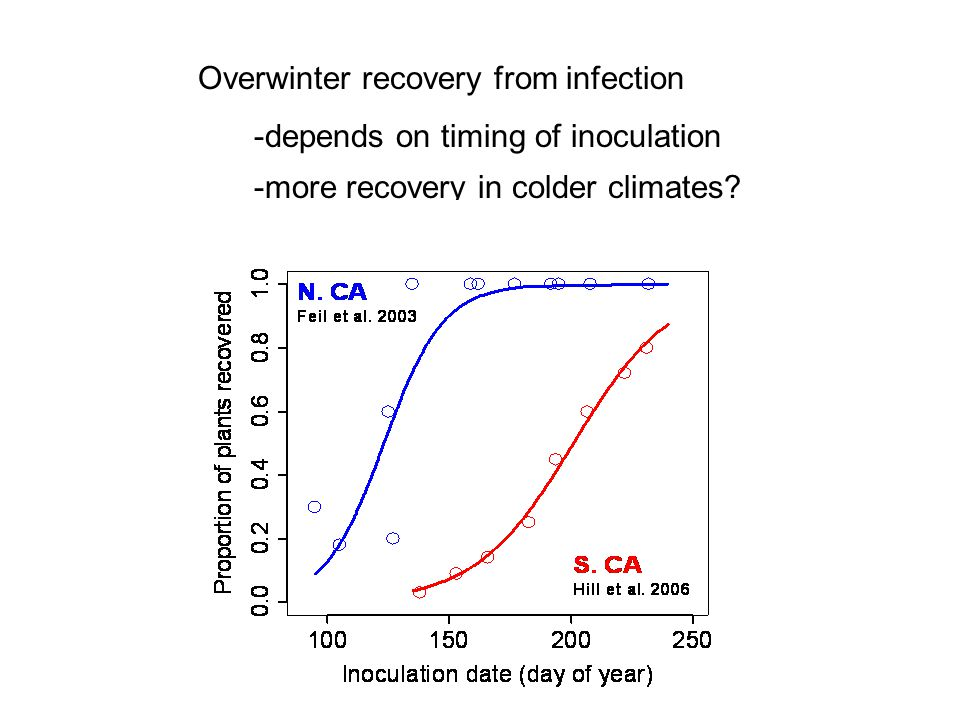 Overwinter recovery from infection -depends on timing of inoculation -more recovery in colder climates?
