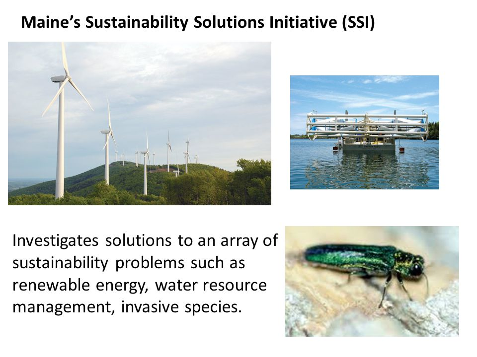 Investigates solutions to an array of sustainability problems such as renewable energy, water resource management, invasive species. Maines Sustainabi