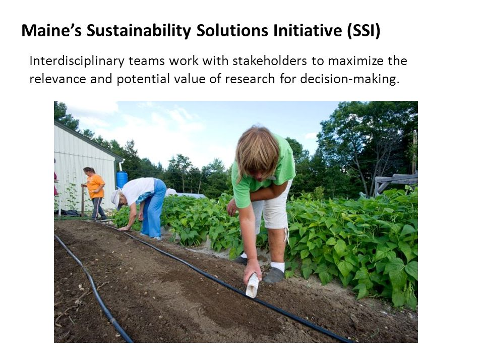 Maine s Sustainability Solutions Initiative Goals Facilitate collaborative interdisciplinary research to understand how social, economic, and ecological systems respond to changing demographic, market, biophysical, and political conditions; Generate and share information among researchers, stakeholders, and decision-makers to support public policies that sustain economic opportunity in concert with preservation of environmental quality; Explore innovative ways of promoting communication between stakeholders and researchers and delivering educational tools to students and teachers engaged in analysis of sustainability issues in the classroom; Establish state-wide networks among government agencies, NGOs and the private sector focused on improved management of natural resources and the development of key technology clusters in the Maine economy