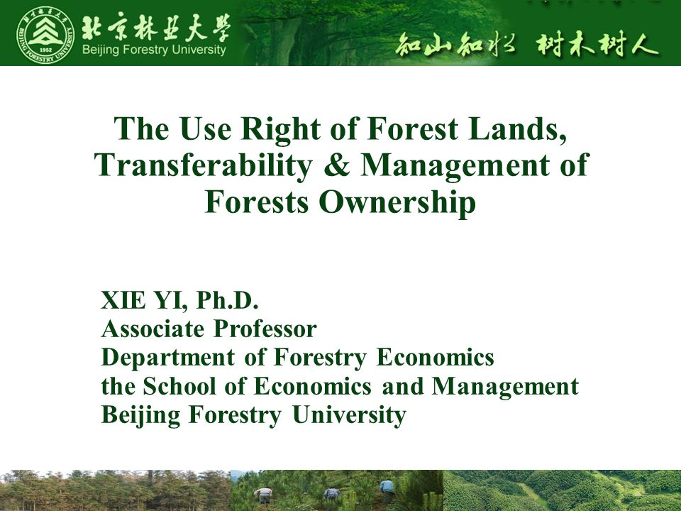 The Use Right of Forest Lands, Transferability & Management of Forests Ownership XIE YI, Ph.D.
