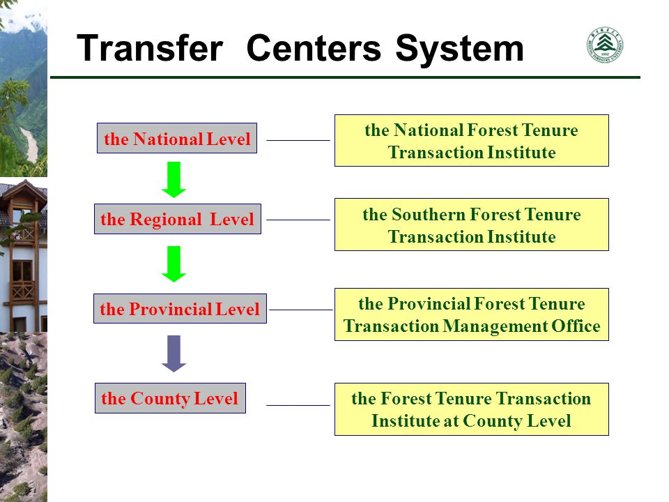Transfer Centers System the National Forest Tenure Transaction Institute the Southern Forest Tenure Transaction Institute the Provincial Forest Tenure Transaction Management Office the Forest Tenure Transaction Institute at County Level the National Level the Regional Level the Provincial Level the County Level