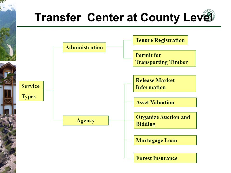 Transfer Center at County Level Service Types Administration Agency Tenure Registration Permit for Transporting Timber Release Market Information Asset Valuation Organize Auction and Bidding Mortagage Loan Forest Insurance