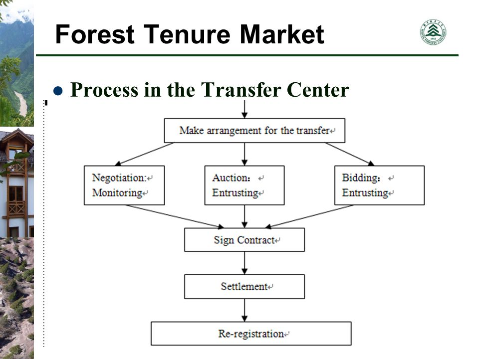 Forest Tenure Market Process in the Transfer Center