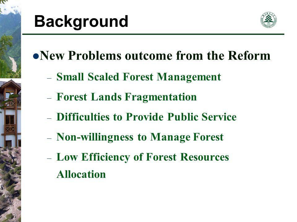 Forest Tenure Market DestinationRegulation Transferor Transferee Forest Tenure Price Mechanism Term Mode Market Operation