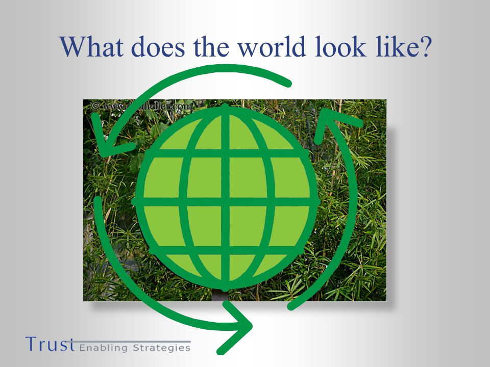 What does the world look like?