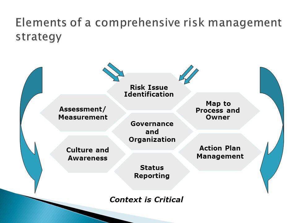 Risk Issue Identification Governance and Organization Status Reporting Map to Process and Owner Action Plan Management Assessment/ Measurement Culture and Awareness Context is Critical