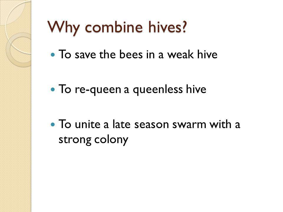 Why combine hives? To save the bees in a weak hive To re-queen a queenless hive To unite a late season swarm with a strong colony