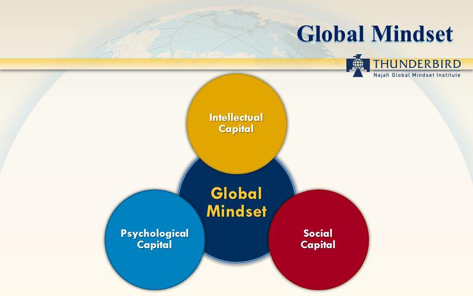 Global Mindset Intellectual Capital Social Capital Psychological Capital