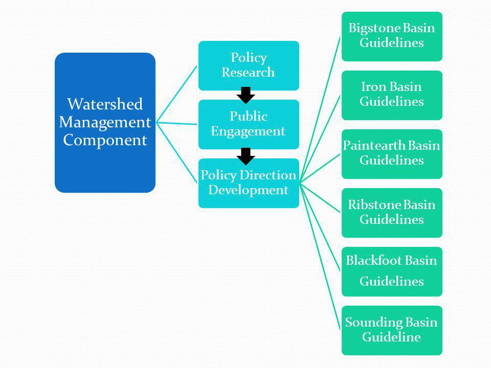 Watershed Management Component Policy Research Public Engagement Policy Direction Development Bigstone Basin Guidelines Iron Basin Guidelines Paintearth Basin Guidelines Ribstone Basin Guidelines Blackfoot Basin Guidelines Sounding Basin Guideline