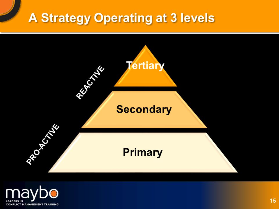 © Maybo Ltd 2006 15 Tertiary Secondary Primary PRO-ACTIVE REACTIVE A Strategy Operating at 3 levels