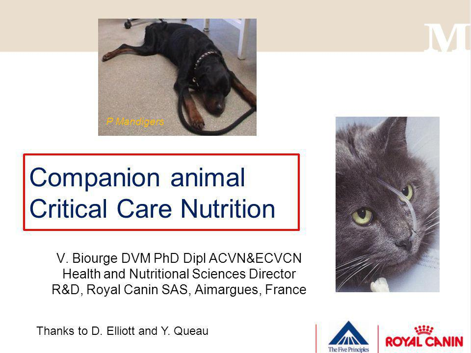 Companion animal Critical Care Nutrition V. Biourge DVM PhD Dipl ACVN&ECVCN Health and Nutritional Sciences Director R&D, Royal Canin SAS, Aimargues,