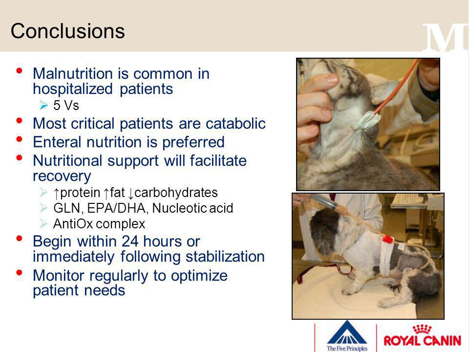 Conclusions Malnutrition is common in hospitalized patients 5 Vs Most critical patients are catabolic Enteral nutrition is preferred Nutritional suppo