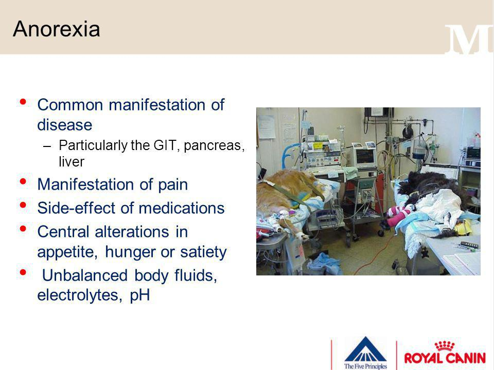 Anorexia Common manifestation of disease –Particularly the GIT, pancreas, liver Manifestation of pain Side-effect of medications Central alterations i