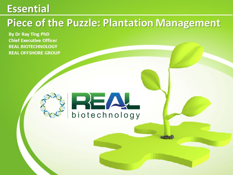 Essential Piece of the Puzzle: Plantation Management By Dr Ray Ting PhD Chief Executive Officer REAL BIOTECHNOLOGY REAL OFFSHORE GROUP