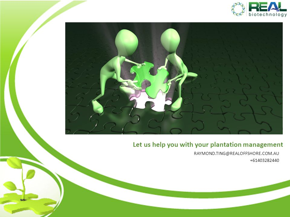 Let us help you with your plantation management