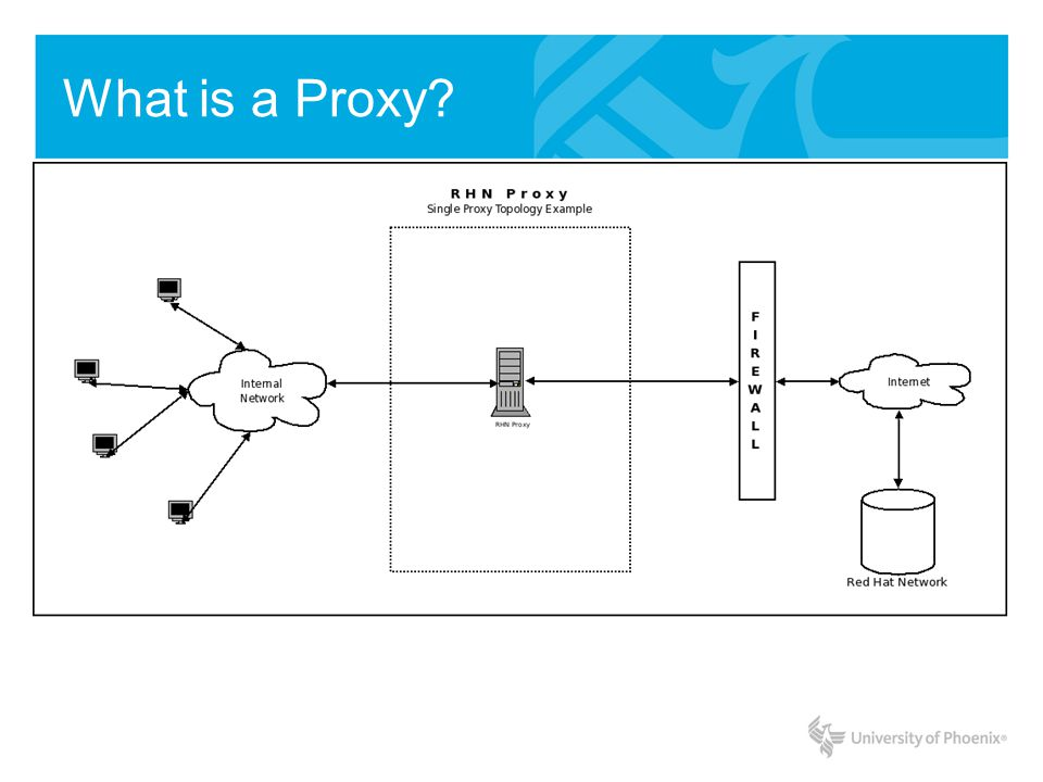 Proxy Installation root@yourdomain:/# This = root prompt root@yourdomain:~# cd..