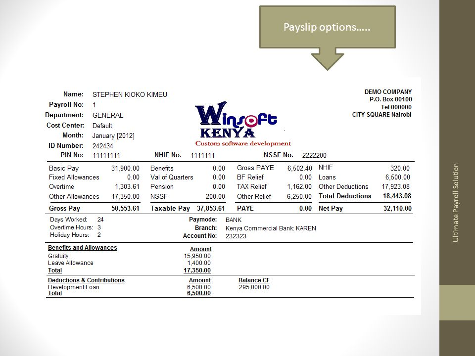 Ultimate Payroll Solution Payslip options…..