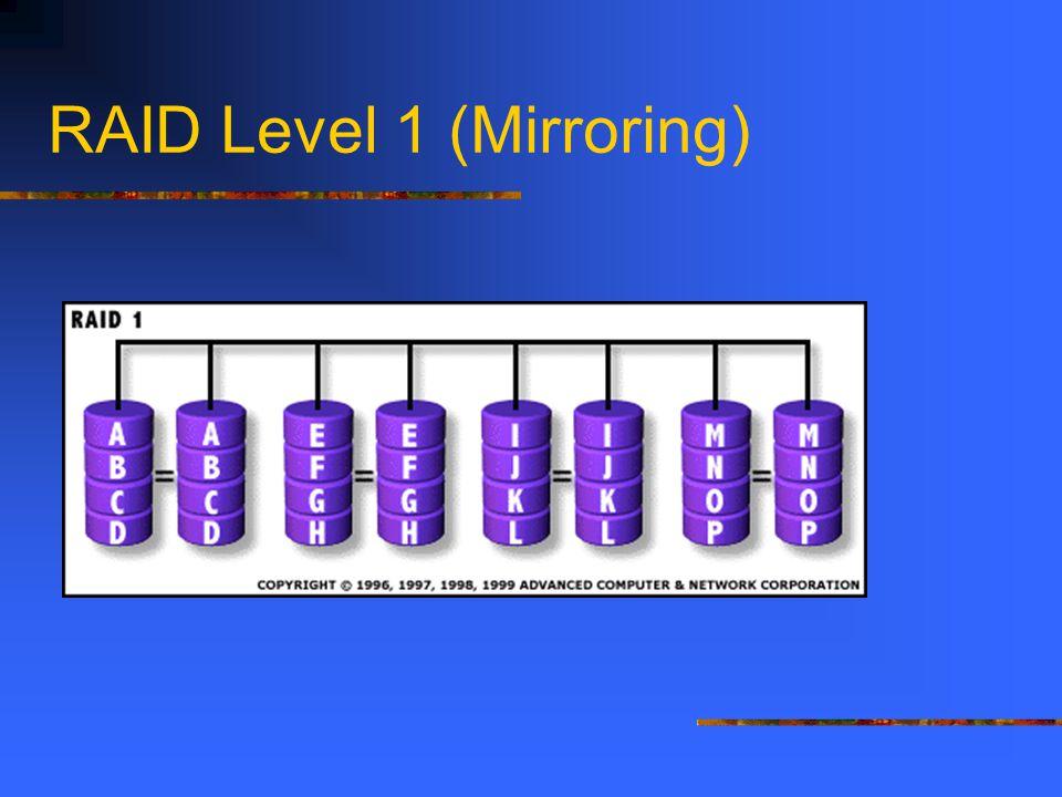 RAID Level 1 (Mirroring)