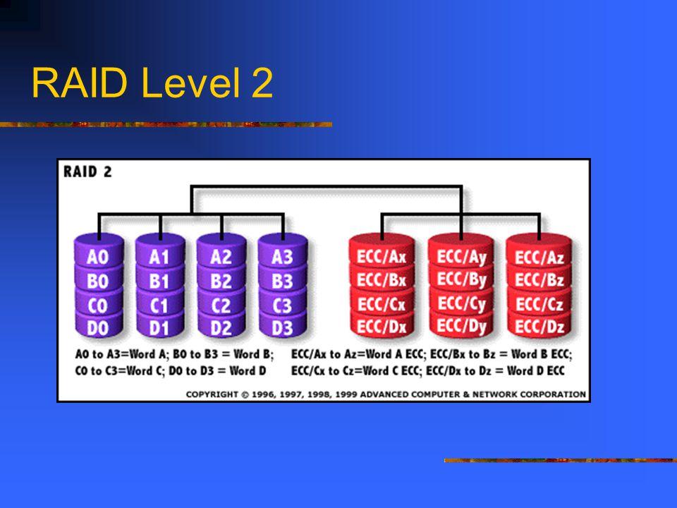 RAID Level 2