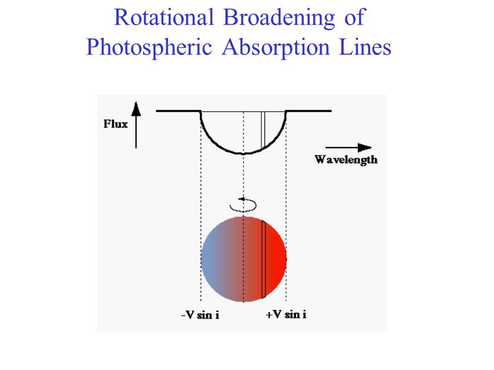 Rotational Broadening of Photospheric Absorption Lines