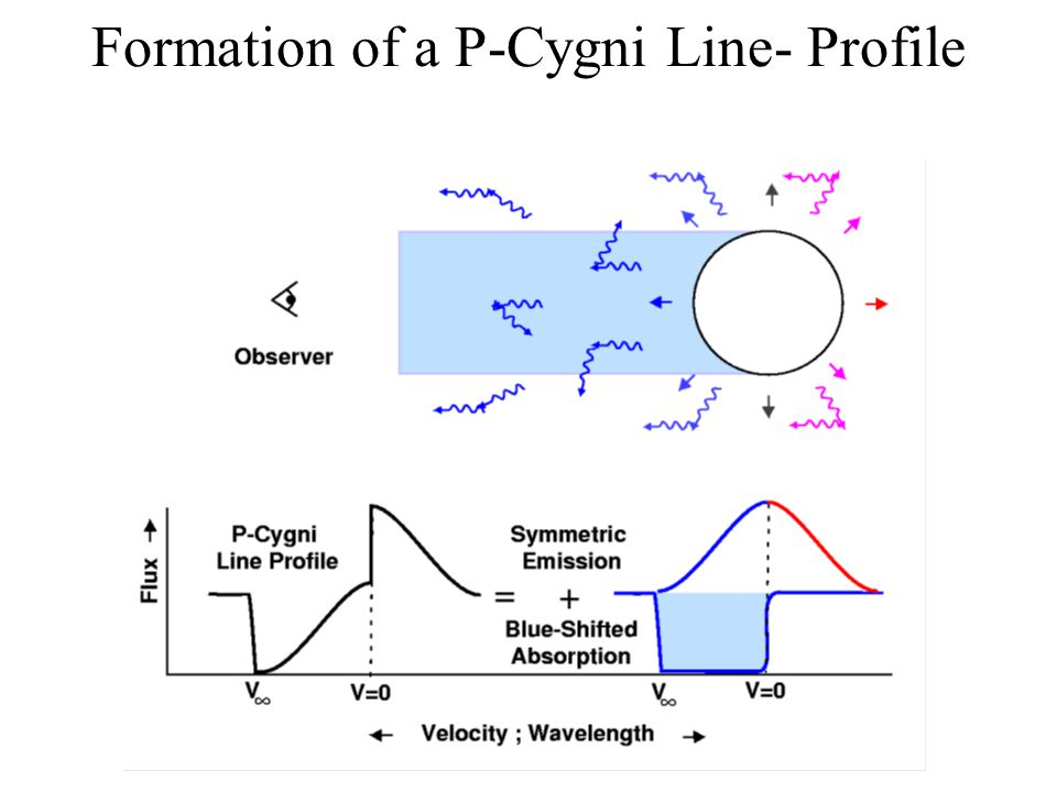 Formation of a P-Cygni Line- Profile