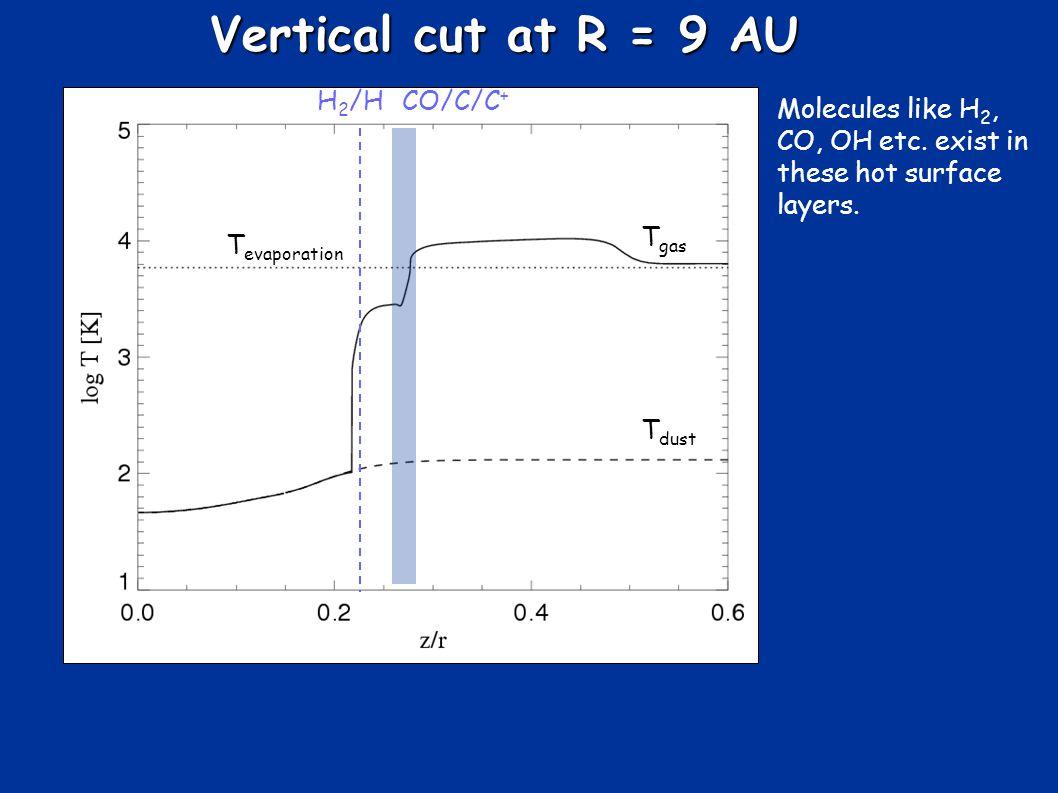 Vertical cut at R = 9 AU T gas T dust T evaporation H 2 /HCO/C/C + Molecules like H 2, CO, OH etc.
