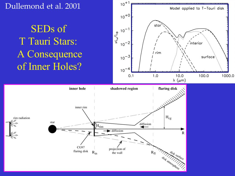 SEDs of T Tauri Stars: A Consequence of Inner Holes Dullemond et al. 2001