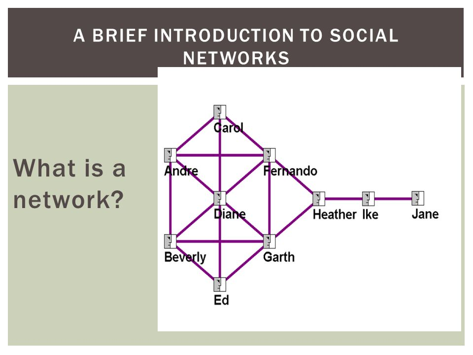 A BRIEF INTRODUCTION TO SOCIAL NETWORKS What is a network