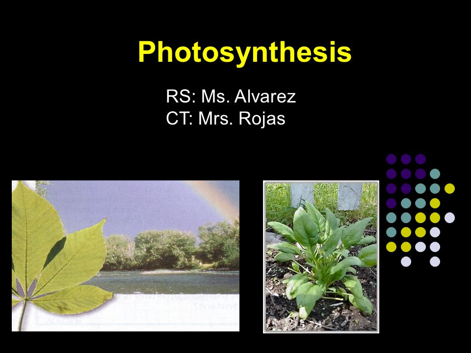 Photosynthesis Autotrophs (Plants, algae, many bacteria) make organic compounds by photosynthesis.