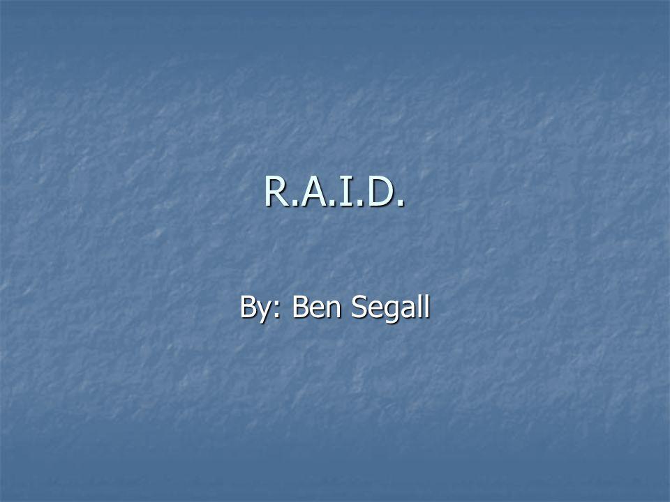 R.A.I.D. By: Ben Segall